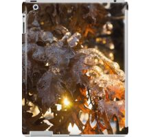 Honey Colored Honeycomb Ice With a Sun Flare iPad Case/Skin