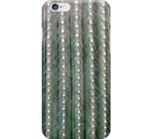 CACTUS NEEDLES PATTERN, closeup green succulent iPhone Case/Skin