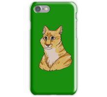 Pet Portrait - Pounce 1 iPhone Case/Skin