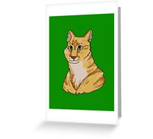 Pet Portrait - Pounce 1 Greeting Card