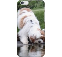 Barnabas and the Fish Pond iPhone Case/Skin