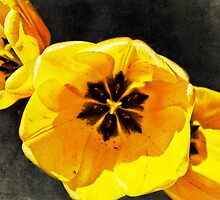 Yellow Tulips pillow by vigor