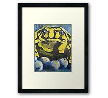 Australian Endangered Corroboree Frog Guarding Eggs Framed Print