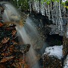 Mini Frozen Fagus Falls by Robert Mullner