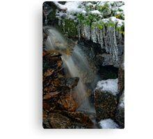 Mini Frozen Fagus Falls Canvas Print