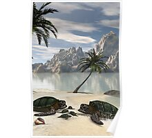Turtles family  Poster
