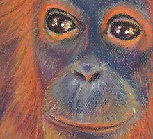 Orangutan  by Robbij