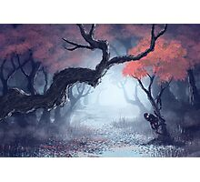 Kodama The Tree Hugger Photographic Print