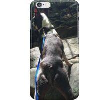 A Brave Little Explorer iPhone Case/Skin