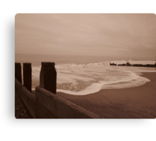 A wave just rolled in Canvas Print
