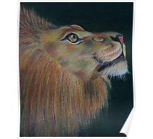 Lion Heart Poster