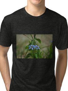 Blue eyed-grass Tri-blend T-Shirt