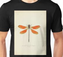 Aid to the identification of insects Charles Owen Waterhouse 1890 V1 V2 065 Euthore Mirabilis Ecuador Unisex T-Shirt