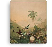 Martin Johnson Heade - Brazilian Hummingbirds 1864. Still life with flowers: flowers, hummingbird, nest, orchid,  lotus blossom, wonderful flower,  egg, passion flowers, garden, magnolias Canvas Print