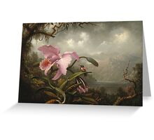 Martin Johnson Heade - Orchid And Hummingbird. Garden landscape: garden view, trees and flowers, blossom,  lotus blossom, botanical park, orchid, wonderful sky, passion flowers, magnolias, hummingbird Greeting Card