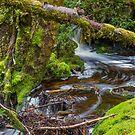 Weindofer's cascades 2 by bluetaipan