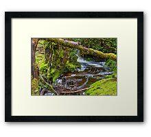 Weindofer's cascades 2 Framed Print