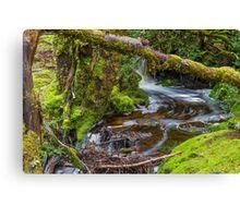 Weindofer's cascades 2 Canvas Print