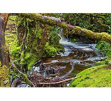 Weindofer's cascades 2 Photographic Print