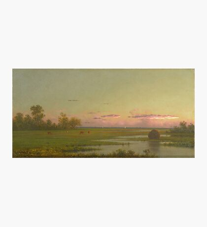 Martin Johnson Heade - Salt Marsh At Southport, Connecticut 1862. Field landscape: field landscape, nature, village, garden, flowers, trees, sun, rustic, countryside, sky and clouds, summer Photographic Print