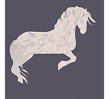 Pink Marbled Pony Photographic Print