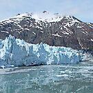 Glacier Bay Alaska by AnnDixon