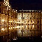Louvre by night by Elena J