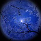 Moonlight Night Pillow by Igor Zenin