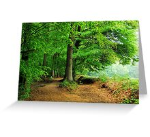 Walking in the May forest on a rainy day Greeting Card