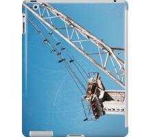 birds and crane iPad Case/Skin