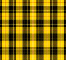 Clan MacLeod Tartan by thecelticflame
