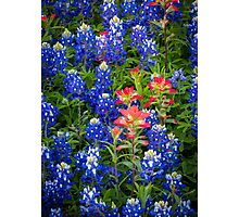 Red White And Blue Photographic Print