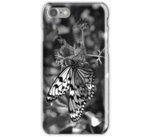 Gray Wings iPhone Case/Skin