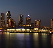 Tampa Skyline by Dustin Williams