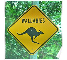 Watch out for Wallabies  Poster