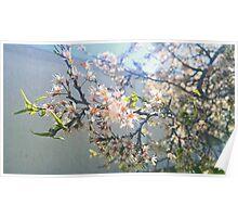 A Unique Floral Poster