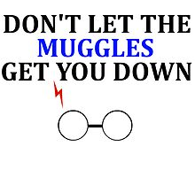 Don't let the muggles get you down by aimeedraper