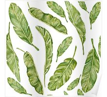 pattern with banana leaves Poster