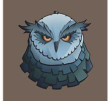 Cynical Owl Photographic Print