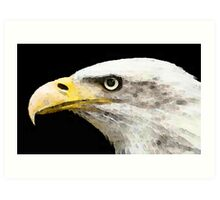 Bald Eagle by Sharon Cummings Art Print