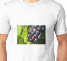 Grapes on vine Unisex T-Shirt