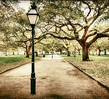 Charleston Battery Park in South Carolina by Kadwell