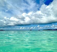 Blue and Green, Tobago Cays, SVG by JCMM