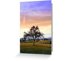 Old tree and amazing cloudy sky | landscape photography Greeting Card
