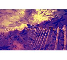 One Among The Fence 3 Photographic Print