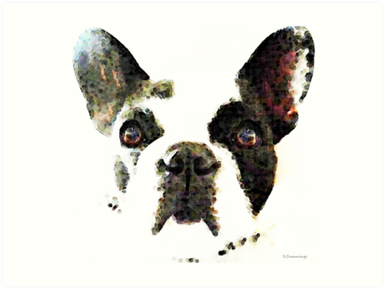Frenchie - French Bull Dog by Sharon Cummings