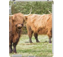 Highland Cows Coos Shaggy Moos Cattle Photo iPad Case/Skin