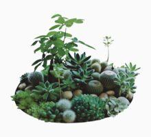 Plants by abigailahn