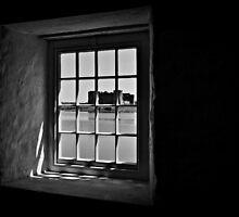 Carew Castle by Paula J James