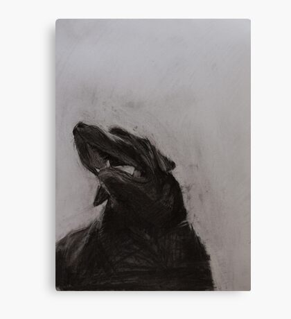 Black and white drawing, Labrador Retriever Canvas Print